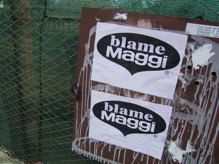 blame maggi