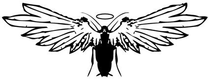cockroach_angel_001