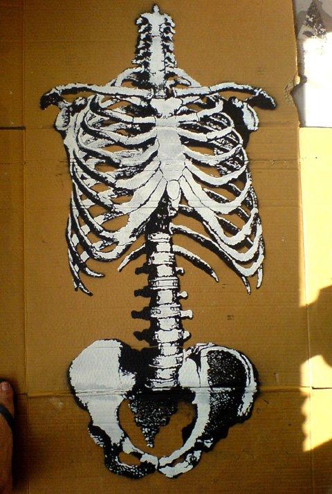 bones_wooster_001